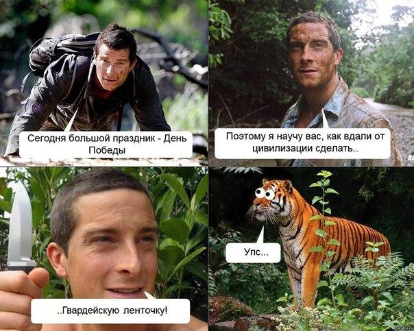 http://s3.uploads.ru/00tBT.jpg
