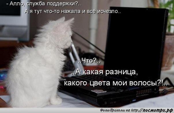 http://s3.uploads.ru/0B9o6.jpg