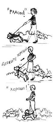 http://s3.uploads.ru/14EPk.jpg