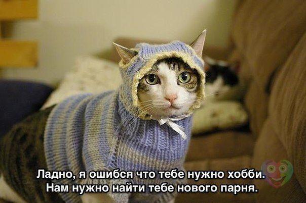 http://s3.uploads.ru/1Jnta.jpg
