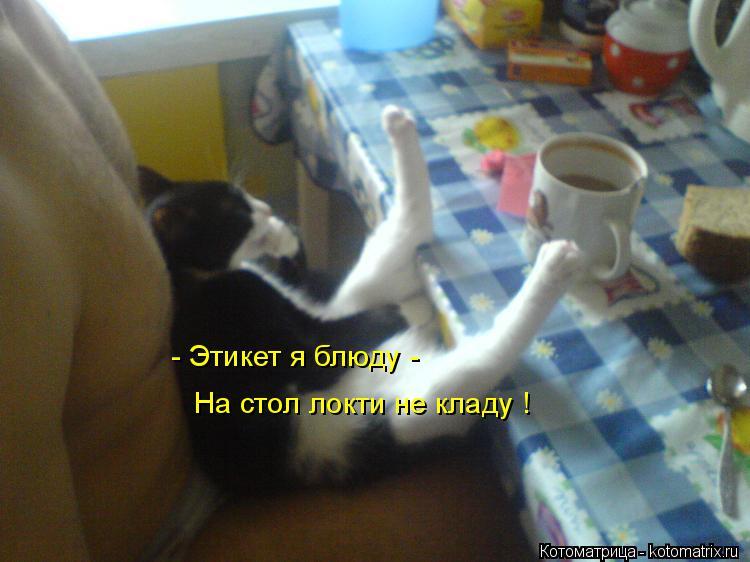 http://s3.uploads.ru/1lrU6.jpg