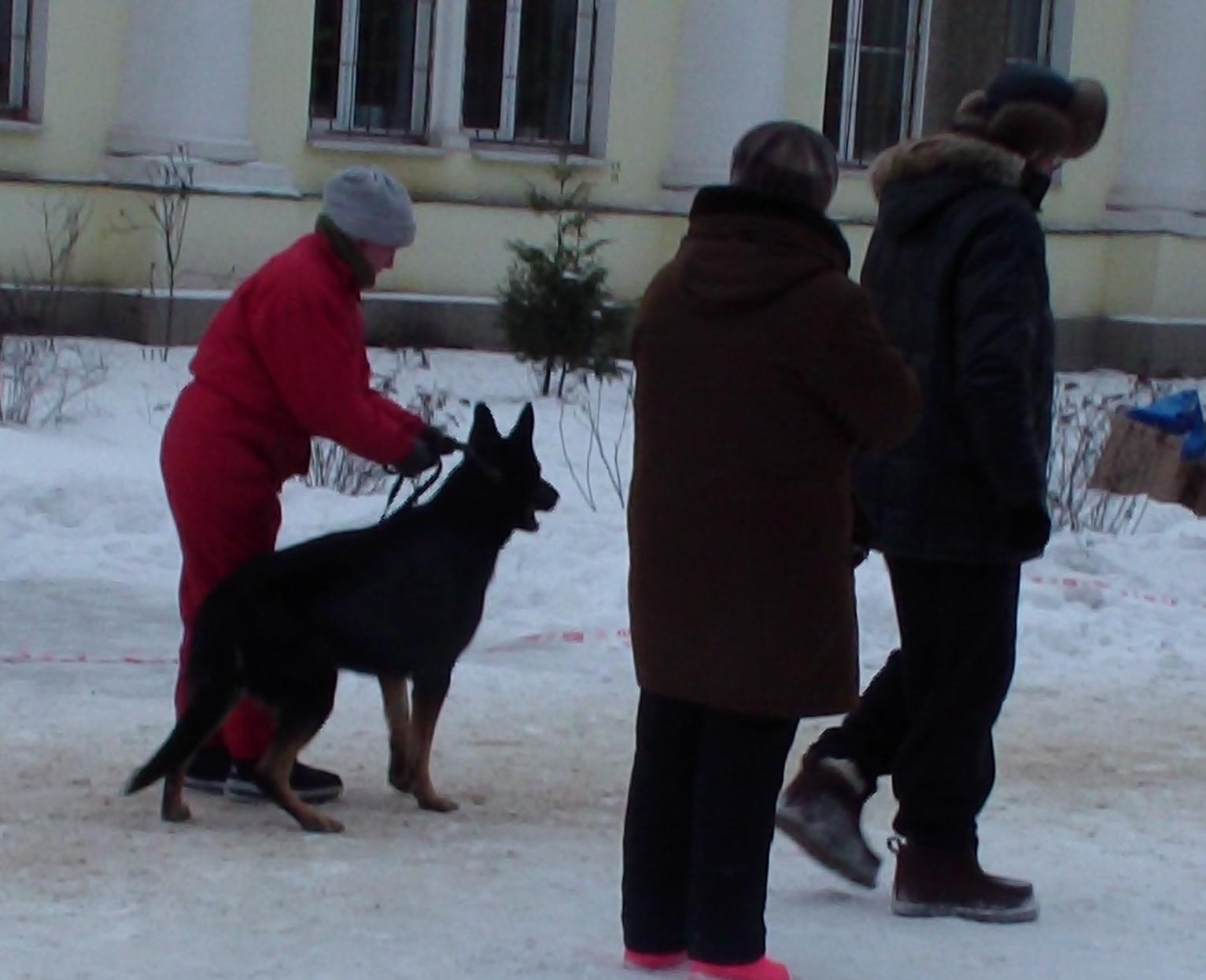 http://s3.uploads.ru/20vOd.jpg