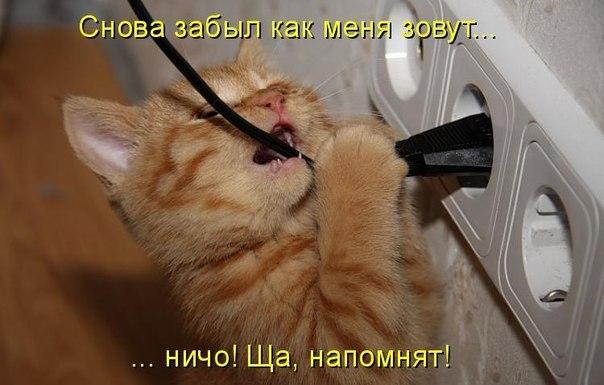 http://s3.uploads.ru/2lv3t.jpg