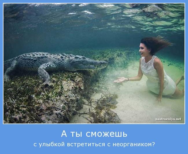 http://s3.uploads.ru/2zS8n.jpg