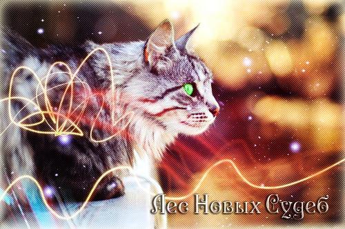 http://s3.uploads.ru/3PyCa.jpg
