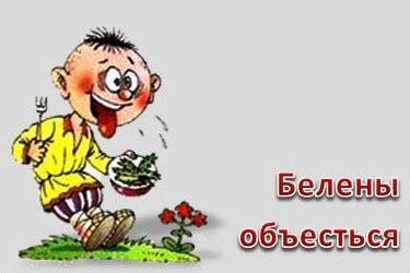 http://s3.uploads.ru/3dP0R.jpg