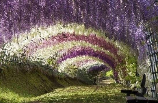 Романтические тунели
