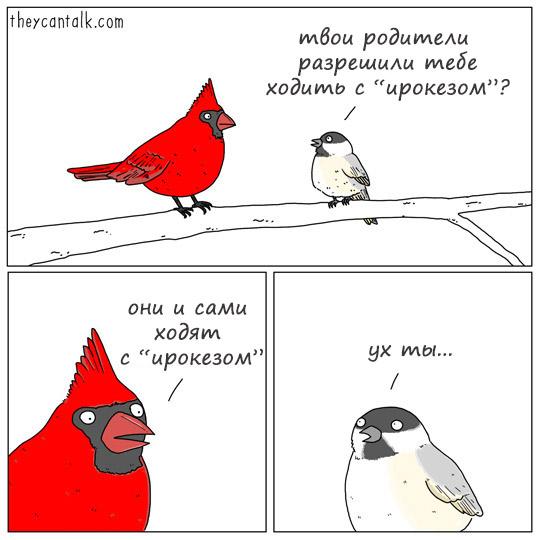 http://s3.uploads.ru/3miy6.jpg
