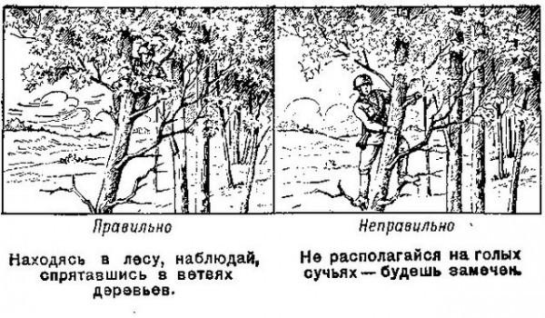 http://s3.uploads.ru/49lLY.jpg
