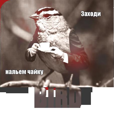 http://s3.uploads.ru/4d1UM.png