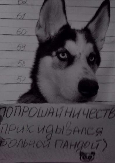 http://s3.uploads.ru/5634W.jpg