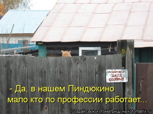 http://s3.uploads.ru/5CnfZ.jpg