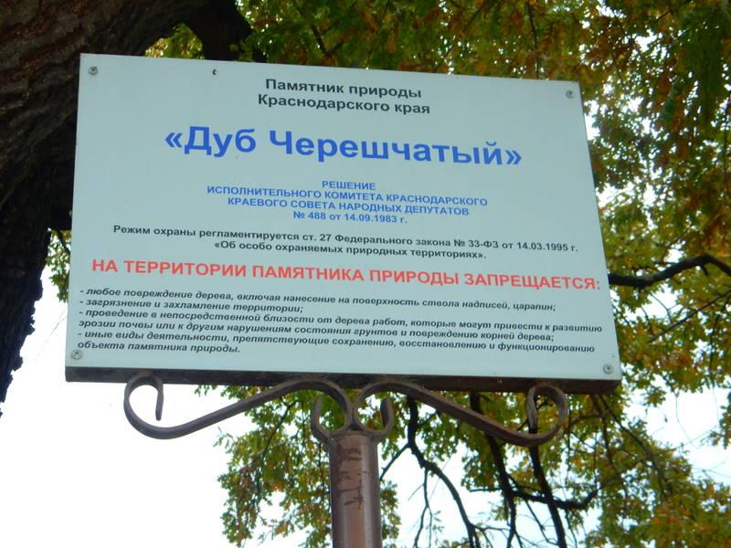 http://s3.uploads.ru/5Ngqa.jpg