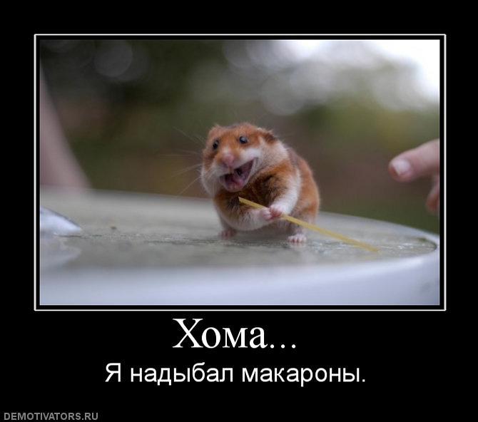 http://s3.uploads.ru/5cFwa.jpg