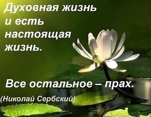 http://s3.uploads.ru/5dEDn.jpg