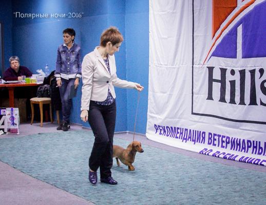 http://s3.uploads.ru/5nO2e.jpg