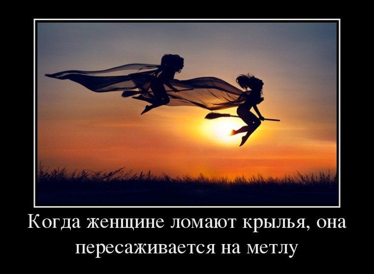 http://s3.uploads.ru/5sN9U.jpg