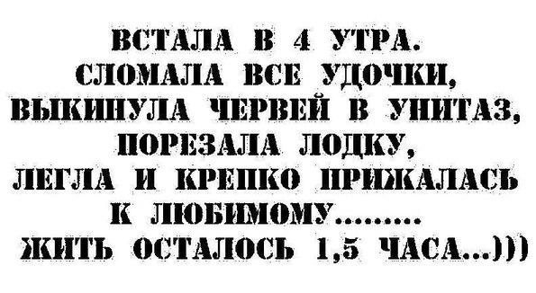 http://s3.uploads.ru/6JoAN.jpg