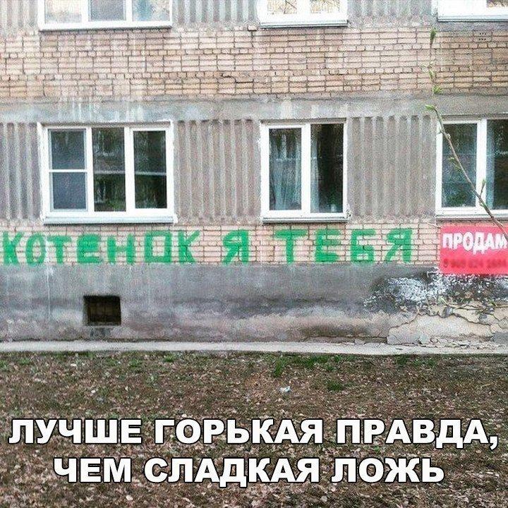 http://s3.uploads.ru/6SkDy.jpg