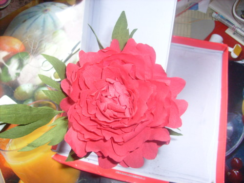 http://s3.uploads.ru/6ez10.jpg