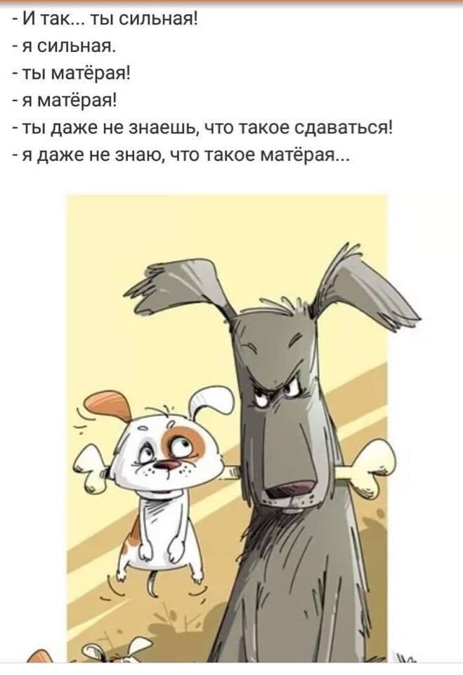 http://s3.uploads.ru/6lpZQ.jpg