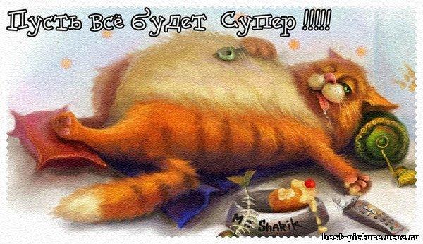 http://s3.uploads.ru/6rCgT.jpg
