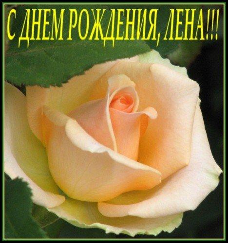 http://s3.uploads.ru/7BJgE.jpg