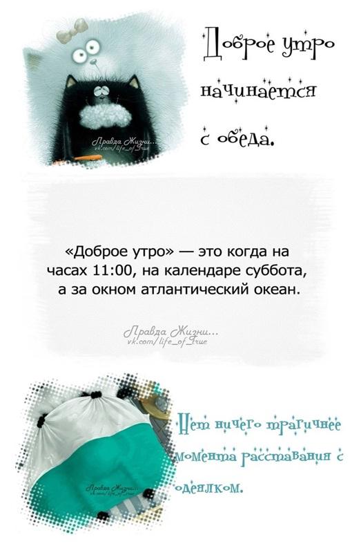 http://s3.uploads.ru/7hOM5.jpg