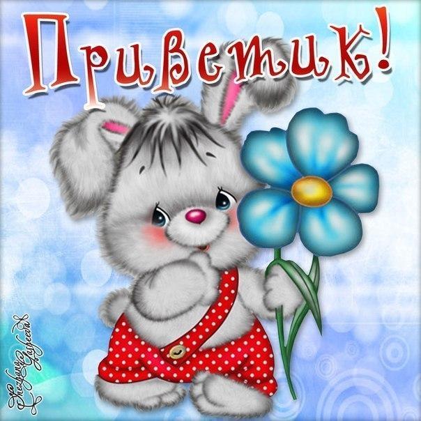 http://s3.uploads.ru/8FH0k.jpg
