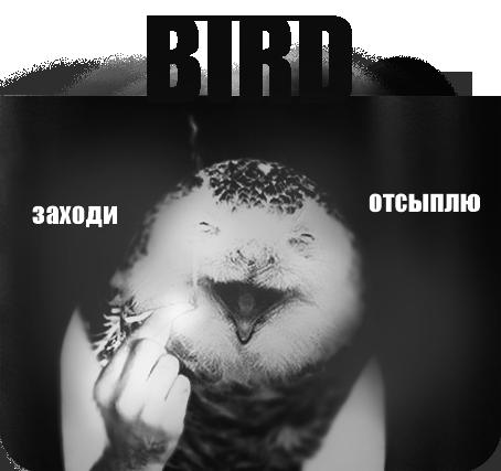 http://s3.uploads.ru/8s5Ei.png