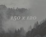 http://s3.uploads.ru/8u0n3.jpg