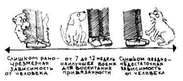 http://s3.uploads.ru/9HnwU.jpg