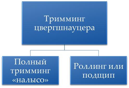 http://s3.uploads.ru/9IUxh.jpg