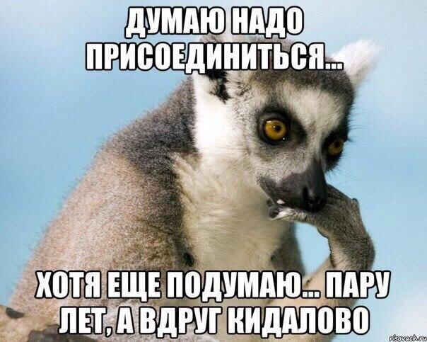 http://s3.uploads.ru/AZS4o.jpg