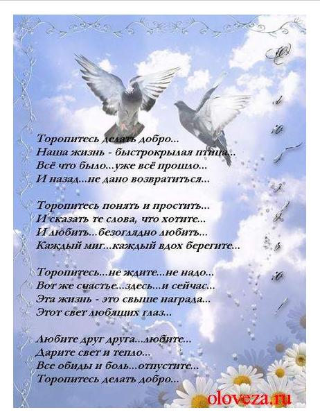 http://s3.uploads.ru/ApzQI.png