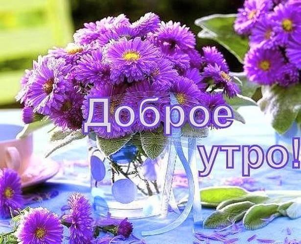 http://s3.uploads.ru/AzdqF.jpg