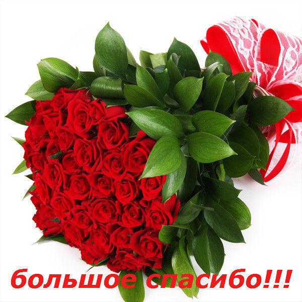 http://s3.uploads.ru/BD0Av.jpg