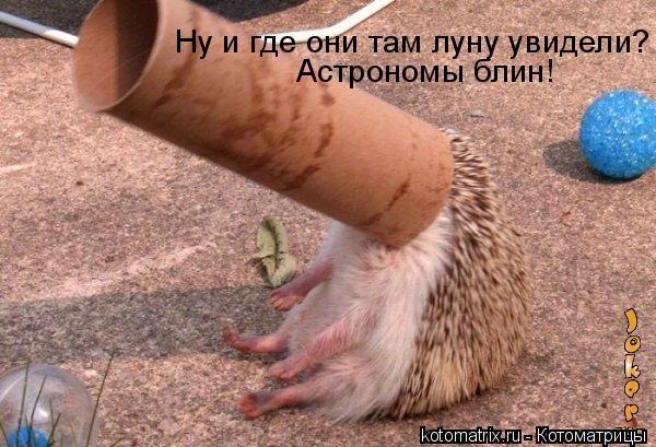 http://s3.uploads.ru/BN7jP.jpg