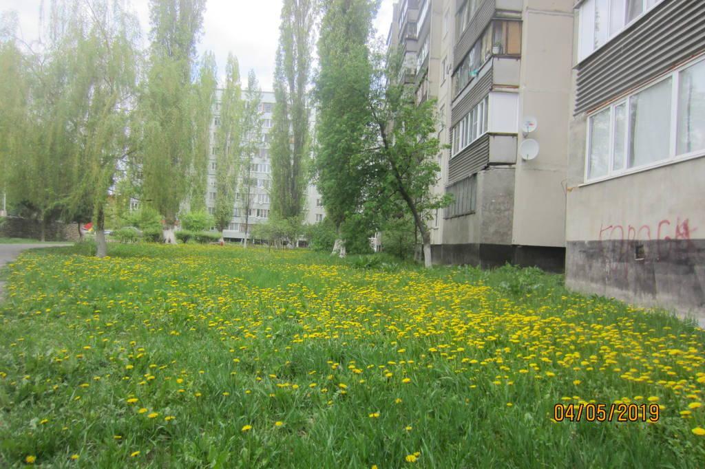 http://s3.uploads.ru/BlhrN.jpg