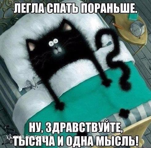 http://s3.uploads.ru/BwC7G.jpg