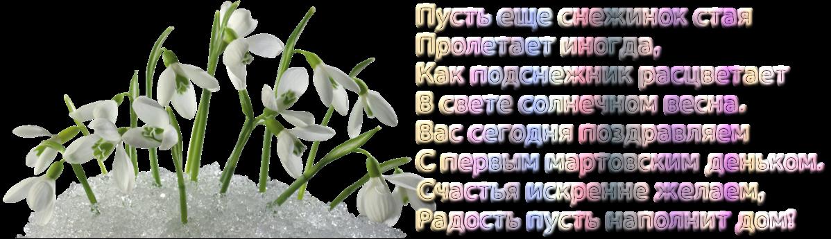 http://s3.uploads.ru/C7LwX.png
