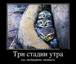 http://s3.uploads.ru/C7atj.jpg