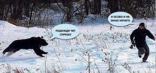 http://s3.uploads.ru/CRmAG.jpg