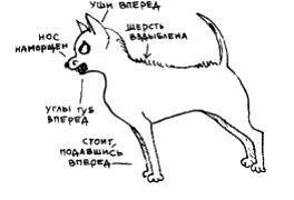 http://s3.uploads.ru/CTjfM.jpg