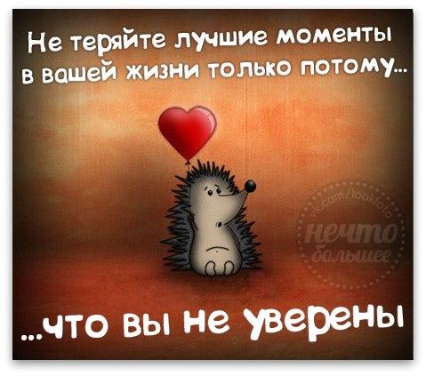 http://s3.uploads.ru/CVUE3.jpg