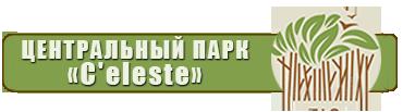 http://s3.uploads.ru/CZkiF.png