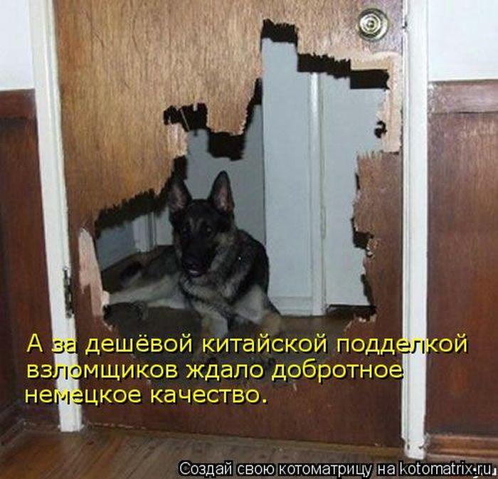 http://s3.uploads.ru/CfSkJ.jpg