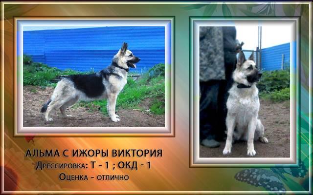 http://s3.uploads.ru/DEVe4.jpg