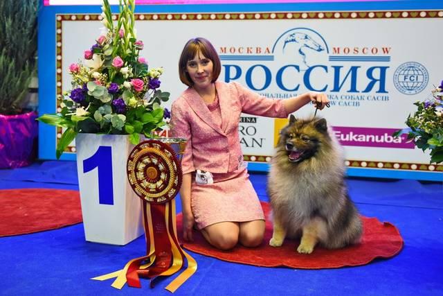 http://s3.uploads.ru/DTVoh.jpg