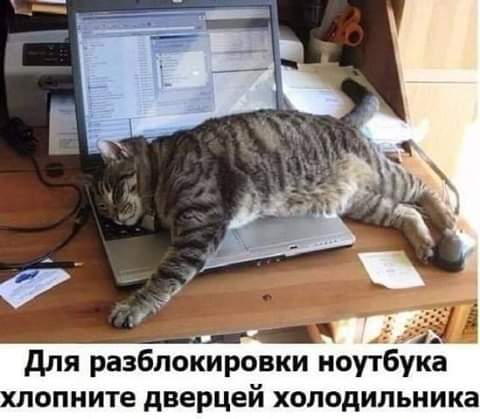 http://s3.uploads.ru/EAdl9.jpg